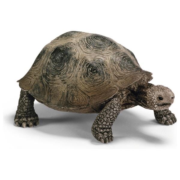 Schleich Turtle