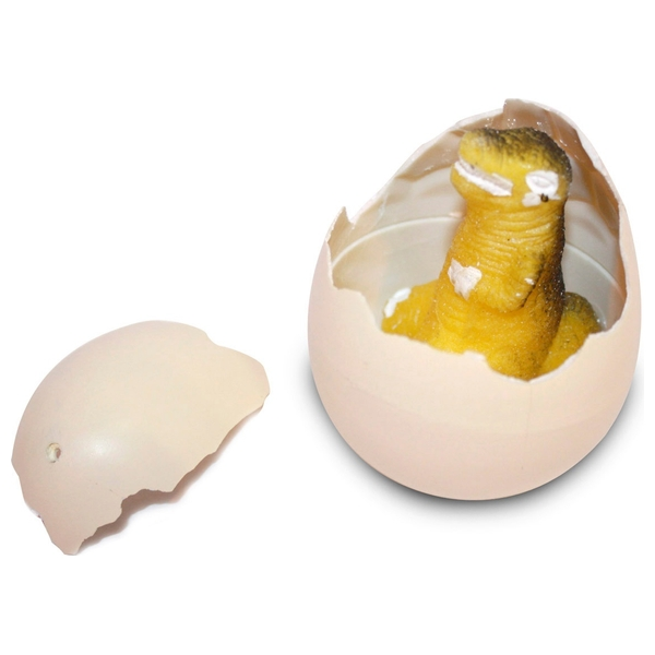 Small Growing Dinosaur Egg