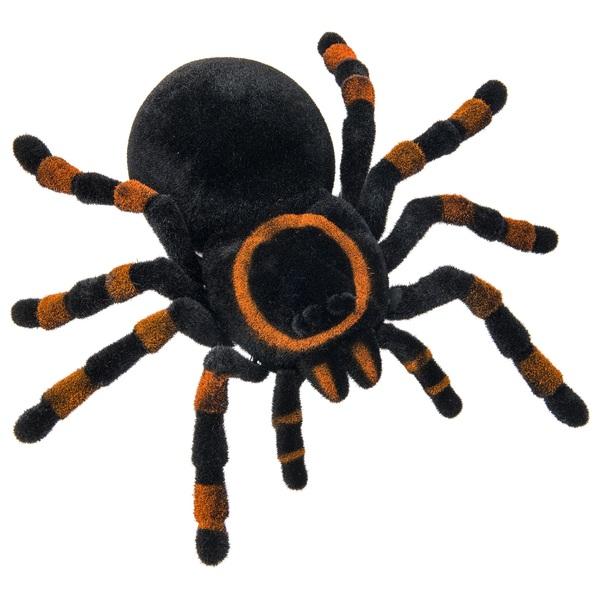 Radio Control Tarantula Other Radio Control - enormous spider legs roblox