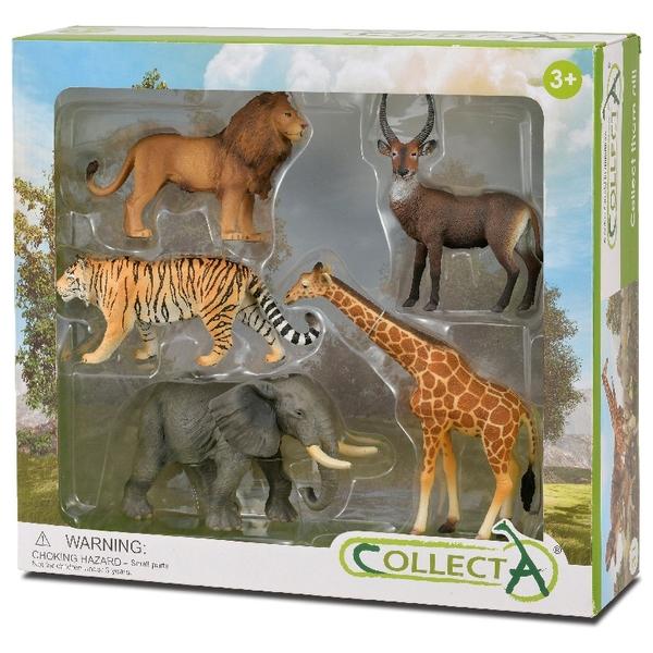 Collecta - Safari Wildlife Window Boxset- 5 Piece Count