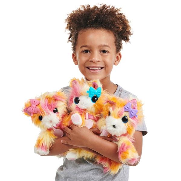 Scruff-a-Luvs Rescue Pet Surprise Soft Toy – Tutti Frutti - Assortment