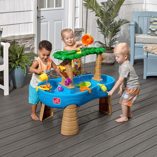 Tropical Rain Forest Water Table