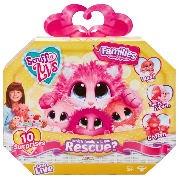 Scruff-a-Luvs Rescue Pet Surprise Soft Toy – Families - Assortment