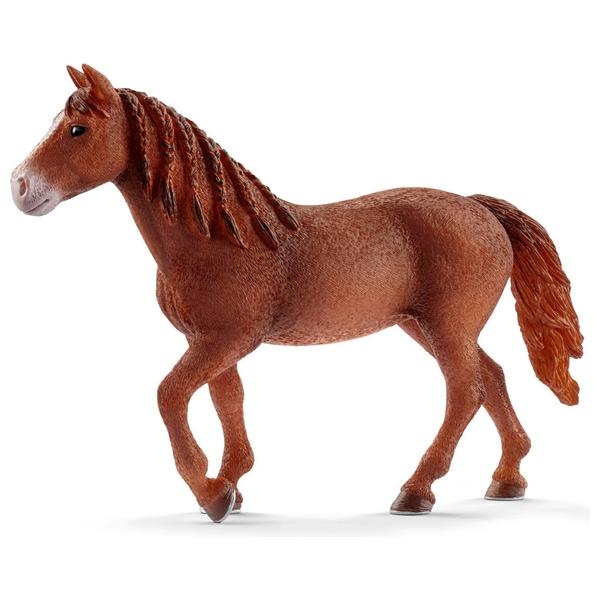 Schleich - 13870 Morgan Horse Stute