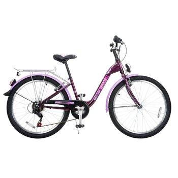 24 Inch Style Bike