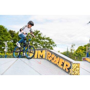 20 Inch Freestyle BMX Bike