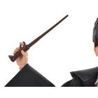 Harry Potter - Harry, Kammer des Schreckens