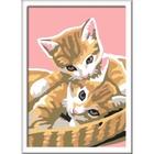 Ravensburger - Malen nach Zahlen: Katzenbabys