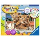 Ravensburger - Malen nach Zahlen: Kleine Löwenbabys
