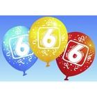 Riethmüller - Latexballons, Zahl 6, 6 Stk.