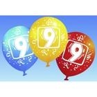 Riethmüller - Latexballons, Zahl 9, 6 Stk.
